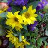 Jahreszeitenfest: Herbstanfang/Mabon