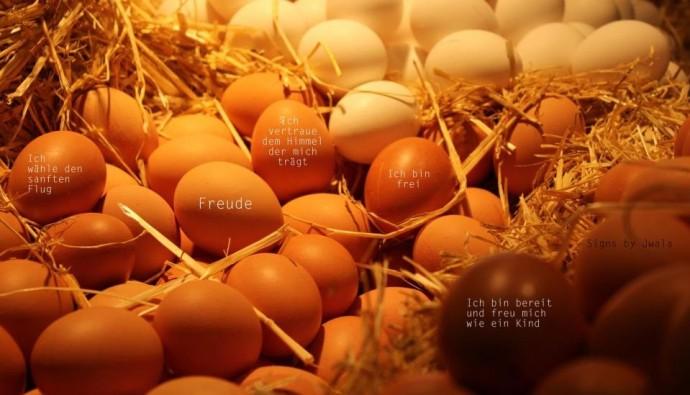 Wo kommen die Eier zu Ostern her?