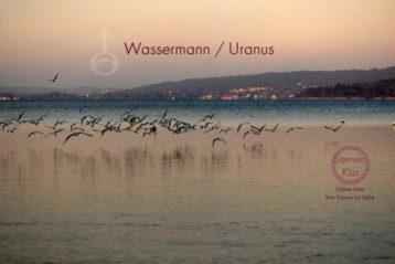 Wassermann – Autonomie und Visionen