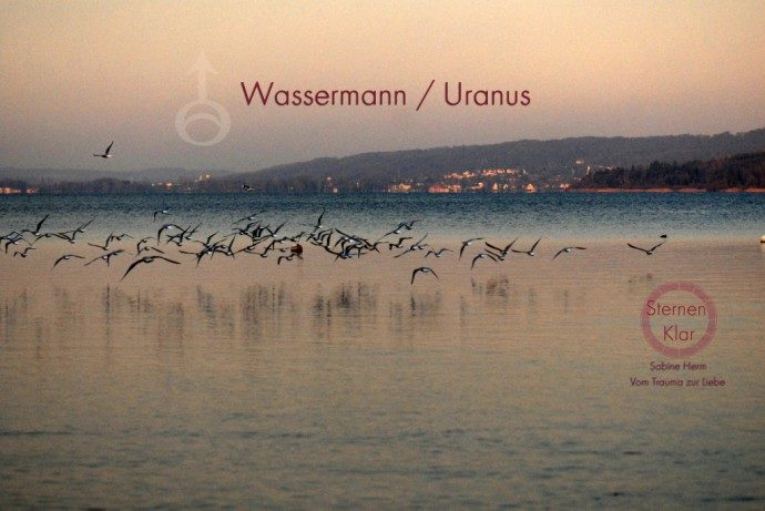 Sternenklar_Wassermann_1 Kopie