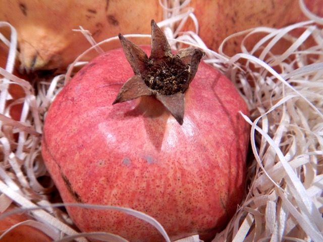 Granatapfel Foto: Monika Kirschke