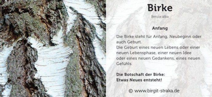 birke_birgit_straka