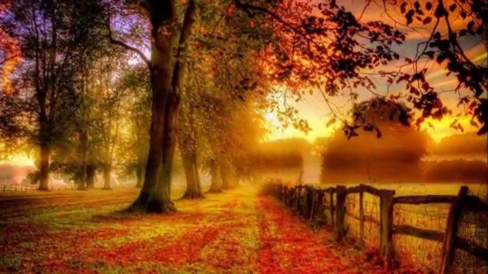 Poesie: Herbstmusik