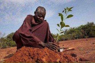 Der Mann, der die Wüste stoppte