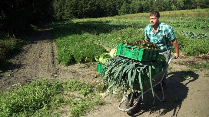 Foto: WDR Bauer Martin Schulze Schleithoff betreibt Solidarische Landwirtschaft