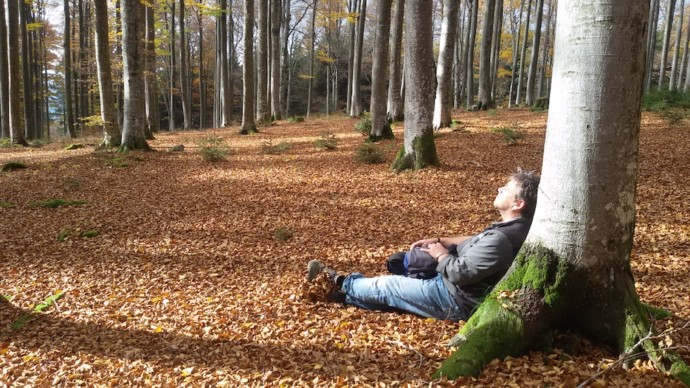 Ein intuitiver Spaziergang in die Natur