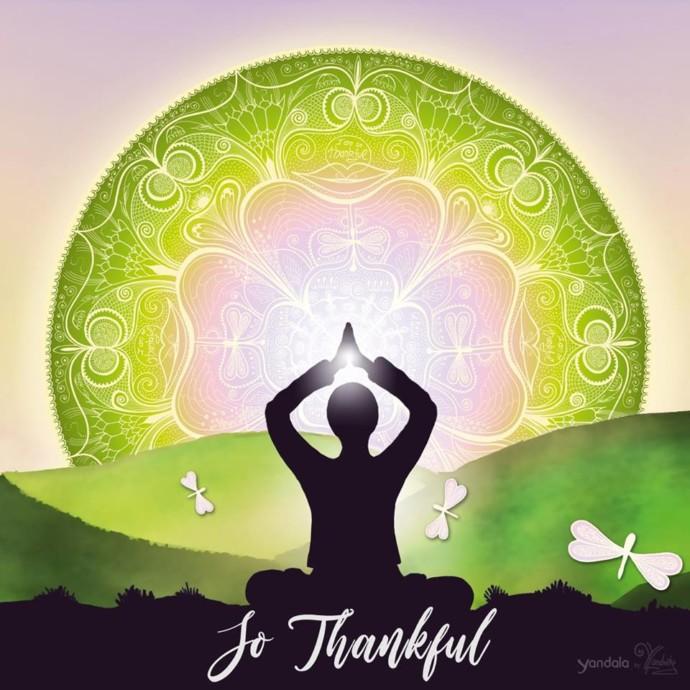 Wie Dankbarkeit dein Leben verändern kann!