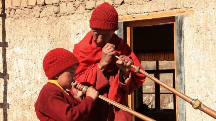 TV-Tipp: Das Kind, der Lama und der Lauf der Dinge
