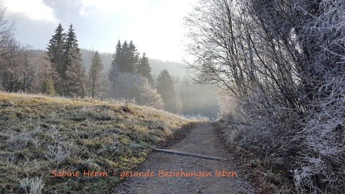 Sonnenfinsternis und Neumond im Steinbock