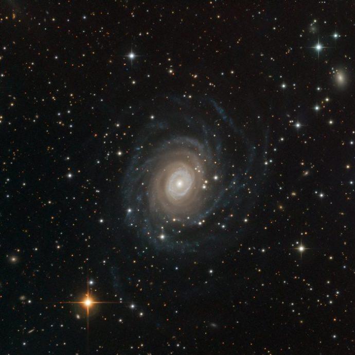 Lichtbild: Spiralgalaxie