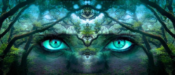 Sternennews: Der Wahrheit ins Auge schauen