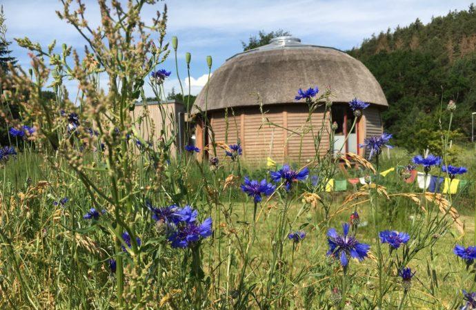 Sommer-Festivals und Retreats 2019