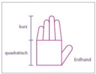 Die Hände begreifen unser Leben