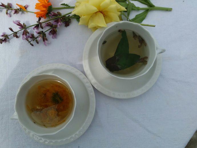 Von der Kunst des Tee-Machens