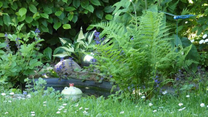 Lichtbild: Gartenidylle