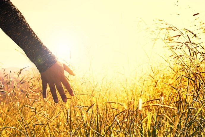 Erwecke Deine Schöpferkraft