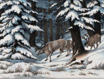 Erinnerung an die Hirschmutter der Wintersonnenwende