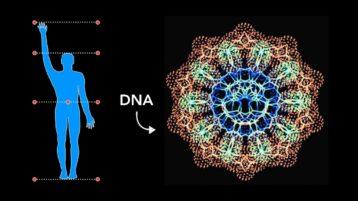 Heilige Geometrie in unserer DNA