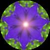 Farben und Licht für Dich: Indigo