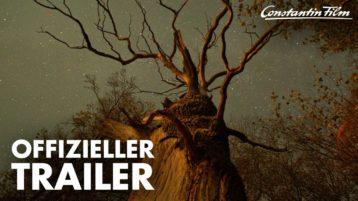 Ins Kino gehen und Bäume pflanzen