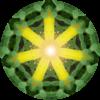 Licht und Farben für Dich: Grün