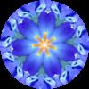 Farben und Licht für Dich: Blau