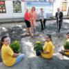 Schulhöfe werden zu blühenden Insektenwiesen