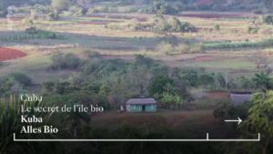 Kuba: Alles Bio