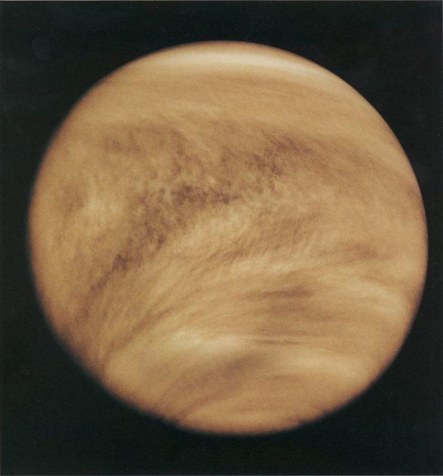 Leben über der Venus?