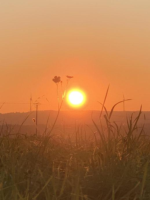 Lichtbild: Oktobersonne